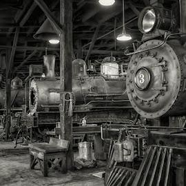 0729-TT-0624-04-16 by Fred Herring - Transportation Trains