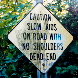 funny actual road sign by Traceystar Meyer - City,  Street & Park  Street Scenes