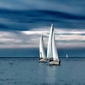 sailing regatta by Bernarda Bizjak - Sports & Fitness Watersports