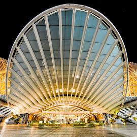 Lisboa Oriente Train Station by Marcin Frąckiewicz - Buildings & Architecture Public & Historical ( lisboa oriente )