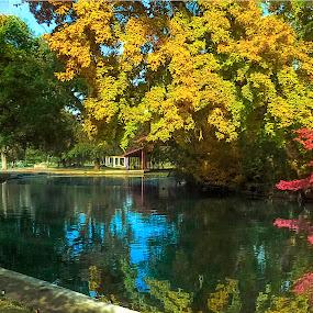 by Danny Bruza - Digital Art Places ( mooney grove park, tulare, water, lake )