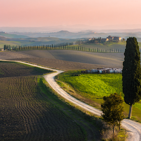 the way to the farmhouse  by Lorenzo Moggi - Landscapes Prairies, Meadows & Fields ( hill, hills, tuscany, landscape, siena )
