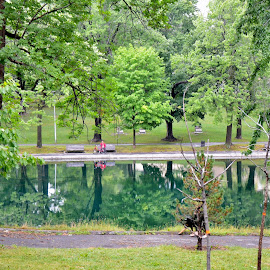 Reflection on lake Parc Lafontaine by Réal Michaud - City,  Street & Park  City Parks ( reflection, nature, park, green, outdoor, summer, trees, lake, cityscape )