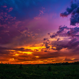 Neon Sky by Paul Stadnyk - Landscapes Sunsets & Sunrises ( clouds, field, sky, color, sunset )