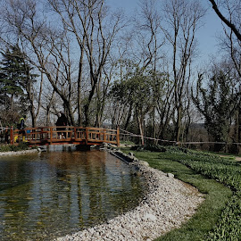 Emirgan park istanbul by Naveen Aggarwal  - City,  Street & Park  City Parks