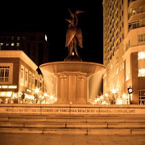 Virginia beach town center fountain by Joseph Belcher - Buildings & Architecture Statues & Monuments ( water, #vibrantwednesday, #wideanglewednesday, fountain, gold, virginia beach, armada hoffler )