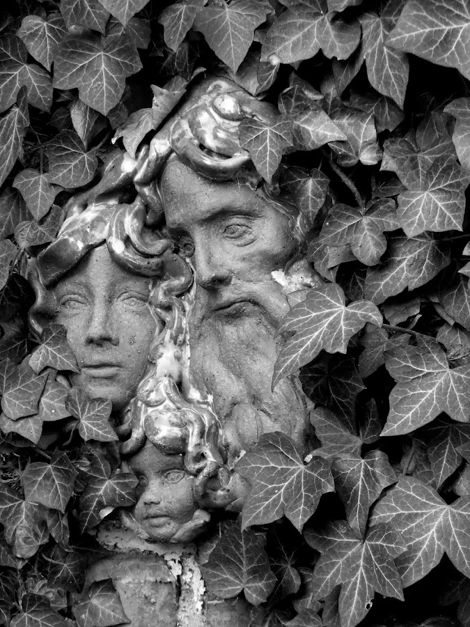 Faces in the Ivy by Peggy LaFlesh - Buildings & Architecture Statues & Monuments