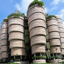 The Hive by Dennis  Ng - Buildings & Architecture Other Exteriors (  )