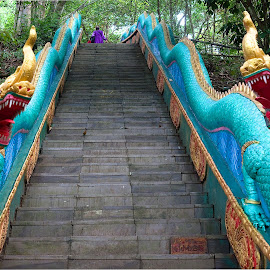 Dragon Steps by Xiufen Gu - Buildings & Architecture Architectural Detail (  )