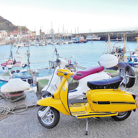 Lambretta or Vespa  by Eloise Rawling - Transportation Motorcycles ( vespa, harbour, motorcycle, lambretta, scooter )
