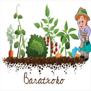 Download Baratxoko For PC Windows and Mac