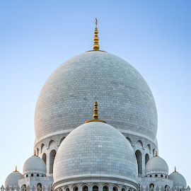 Sheikh Zayed Grand Mosque by Karim Eldeghedy - Buildings & Architecture Places of Worship ( d750, mosque, symmetric, abu dhabi, 16-35, nikon )