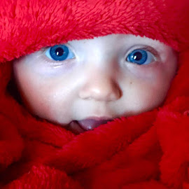 Blue eyes by BeckyandTony Corso - Babies & Children Babies (  )