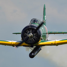 Focused by Greg Harrison - Transportation Airplanes ( quad city airshow, torpedo bomber, kate, wwii aircraft, pearl harbor )