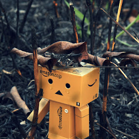 Danbo Sad by Joseph Basukarno - Artistic Objects Toys ( danbo, sad, still life, toys )