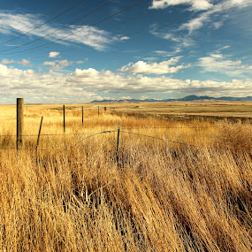 Mayhem Biking Trail #2 by Shane Vandenberg - Landscapes Prairies, Meadows & Fields