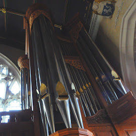 Organ of the Law by DJ Cockburn - Buildings & Architecture Places of Worship ( music, legal, christian, lincoln's inn fields, church, chapel, pipes, england, inigo jones, benches, london, organ, 17th century, inns of court, wc2a, pews, holborn )
