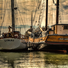Olga and Lokki by Bojan Bilas - Transportation Boats