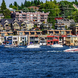 Fun in the Sun by Lenny Stewart - City,  Street & Park  Neighborhoods ( boating, bay, seattle, neighborhood, summer fun,  )