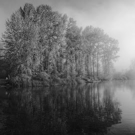 Transitions  by Todd Reynolds - Black & White Landscapes