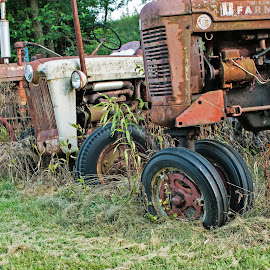 Farmall Family by Howard Mattix - Transportation Other ( tractors, antiquies, farm equipment, transportation, artistc objects, decay )