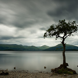 the lone tree by Charlie Davidson - Landscapes Cloud Formations ( water, clouds, mountains, scotand, lake, long exposure, loch )