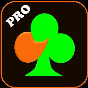 BJ Bridge Pro 2017 For PC