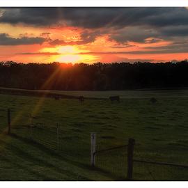 by Theresa Stevens - Landscapes Sunsets & Sunrises