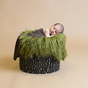 Woodland Story by Nicole Ferris - Babies & Children Babies ( moss, sleeping, boy, log, newborn )