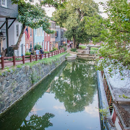 C&O Canal, Georgetown by Dale Youngkin - City,  Street & Park  Historic Districts ( georgetown, park, street, c&o canal, canal, city )