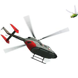 zwei Hubschauber ;-) by Elke Krone - Digital Art Animals