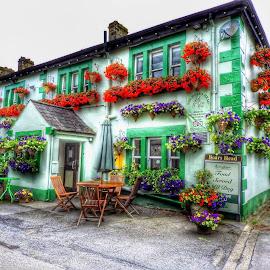 by Betty Taylor - Uncategorized All Uncategorized ( building, flowers, pub,  )