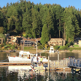 Sunday Afternoon at Gig Harbor, Washington by Eric Michaels - City,  Street & Park  Neighborhoods ( water, houses, afternoon, green, boats, neighborhood, reflections, boat, people, sunny, trees, pier, men, homes, man )
