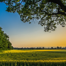 Sunset on the Fields by Emanuele Zallocco - Landscapes Prairies, Meadows & Fields