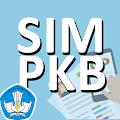 App SIM PKB APK for Kindle