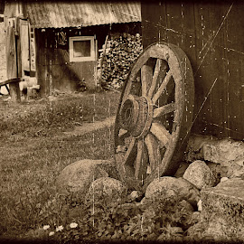 Wheel by Zenonas Meškauskas - Artistic Objects Antiques ( old, farmstead, wheel, vintage, country )