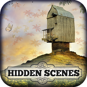 Hidden Scenes - Strange Places