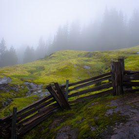 Box Canyon Loop Trail by Erik Lykins - Landscapes Mountains & Hills ( haze, 20mm, mountain, tranquil scene, national parks, hilly, landscape, usa, spring, hiking, washington, mountains, mt. rainier national park, no people, trail, wet, pacific northwest, hazy, hill, green, forest, rural, fence, national park, foggy, north america, fog, mt. rainier, outdoors, d7000, trees, day, wa, box canyon loop, 20mm/f2.8, outside,  )