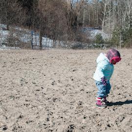 Shadow Chasing by Herb Drummond - Babies & Children Children Candids ( dog park, winter, bleak, shadow, pink, sunshine, aqua )