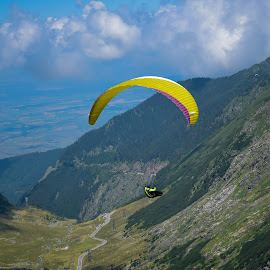 Paragliding  by Emanuel Pislaru - Sports & Fitness Other Sports ( adventure, adrenaline, action, activity )