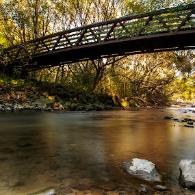 Walk in the Park by Ralph Sobanski - Landscapes Waterscapes ( water, canada, autumn, toronto, fall, bridge, river )