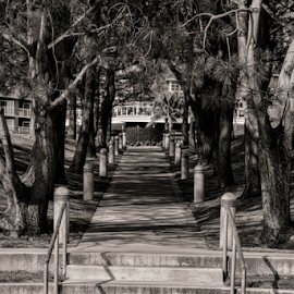 To the hotel by Matt Folsom - City,  Street & Park  City Parks ( dana point, lpa, night, sunrise )
