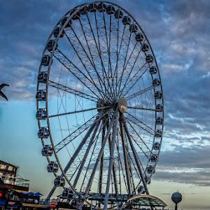 Ferris Wheel.jpg
