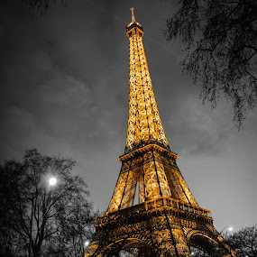 Eiffel Tower by Mateo de la Vega - Buildings & Architecture Statues & Monuments ( paris, eiffel tower, tour eiffel, b&w )