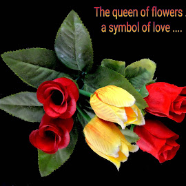 Roses by SANGEETA MENA  - Typography Quotes & Sentences