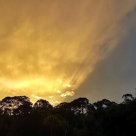 Sunset after the rain by Christina McGeorge - Landscapes Sunsets & Sunrises ( sunset, daytona,  )