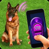 Game Training Dog Clicker Trinket apk for kindle fire