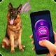 Training Dog Clicker Trinket