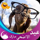 App Funny Eid Gif Animation : Bakra Eid APK for Windows Phone