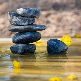 Black Rocks by Robin O'Donnell - Artistic Objects Other Objects ( water, cairn, yellow, flowers, rocks, black )